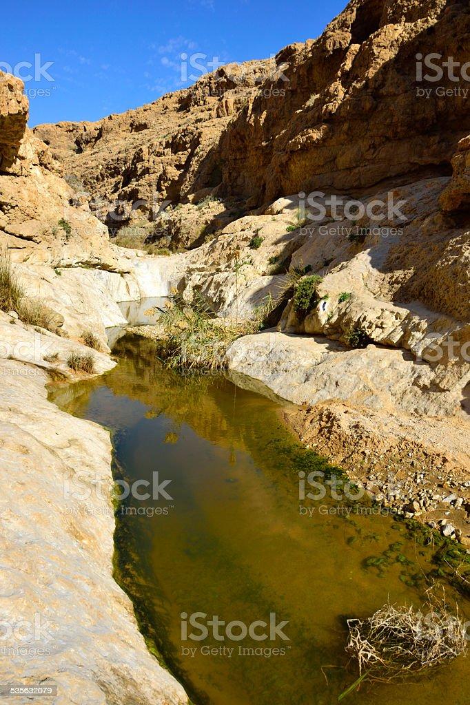 Nahal Zafit in Negev desert. stock photo
