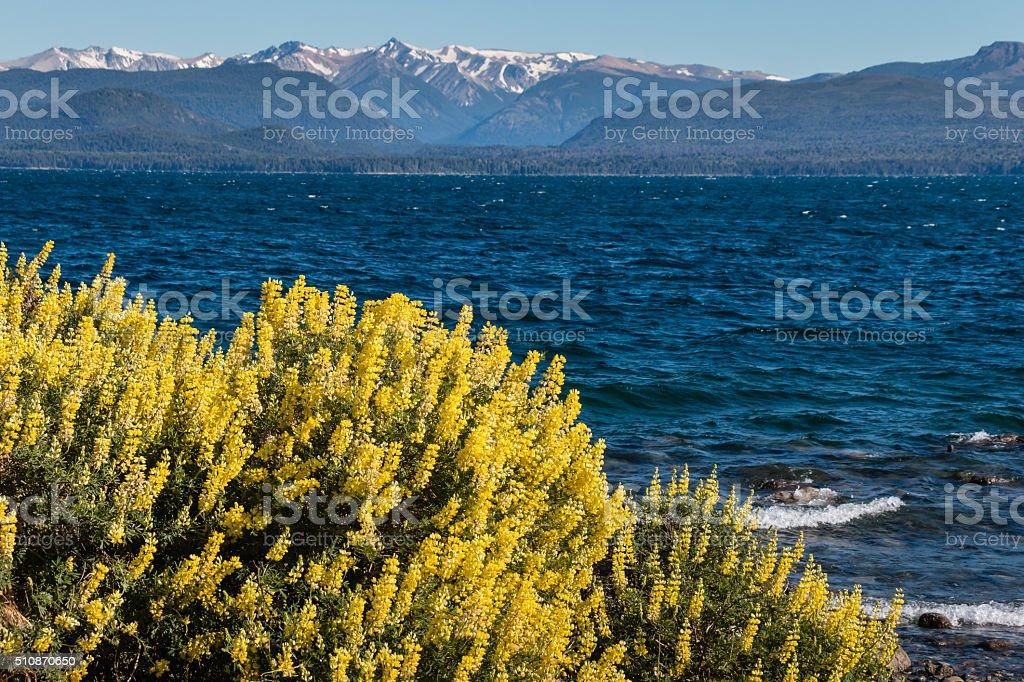 Nahuel Huapi Lake in Argentina stock photo