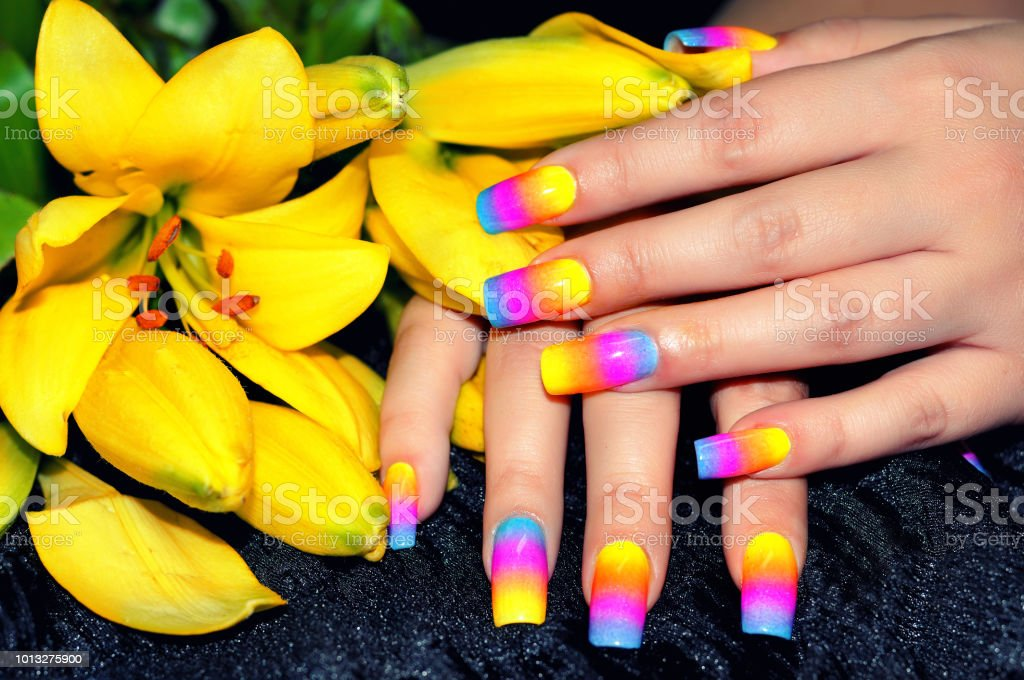 Nail art manicure.Female hands with colorful nail design holding beautiful  yellow flower.Manicure - Nail Art Manicurefemale Hands With Colorful Nail Design Holding