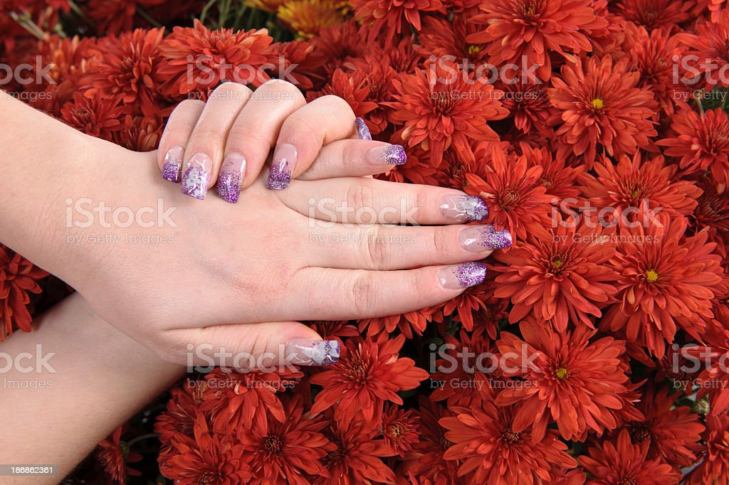 nails on red flowers stock photo