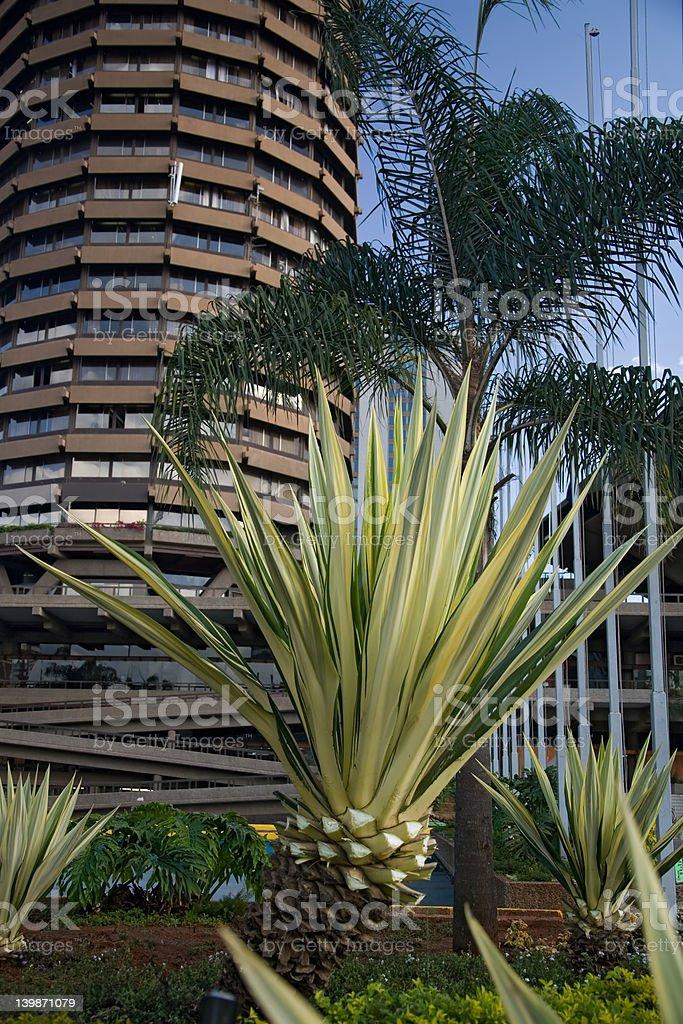 nairobi royalty-free stock photo