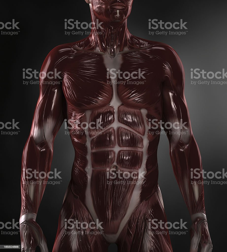Naked man with visible muscles stock photo