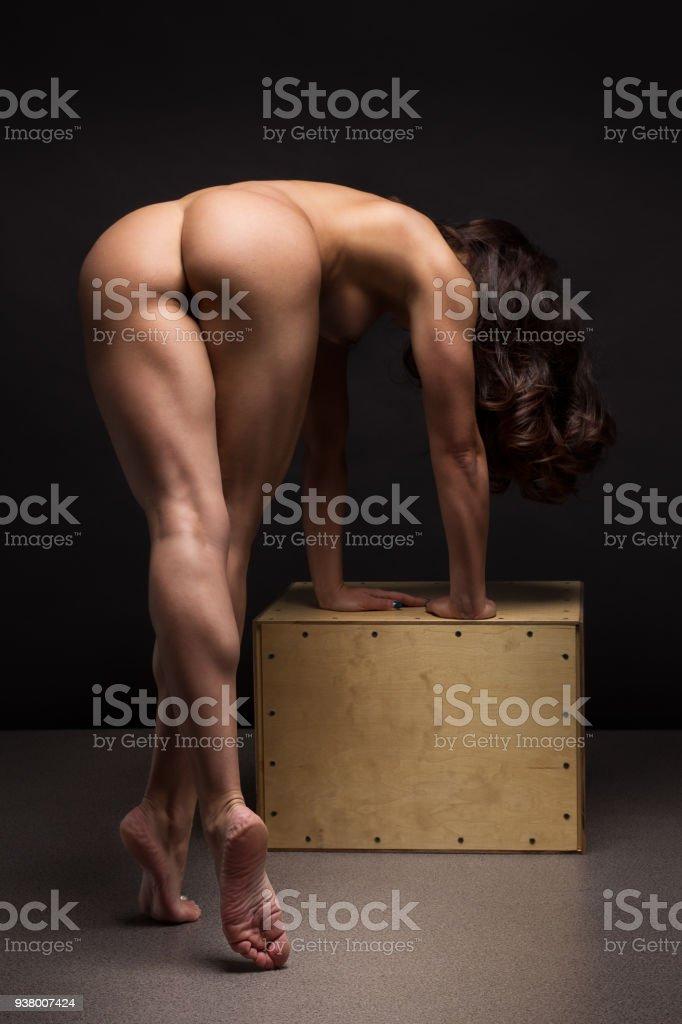 Shemale Porn Amateur
