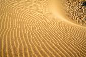 Nam Cuong Sand Dunes at Phan Rang Desert