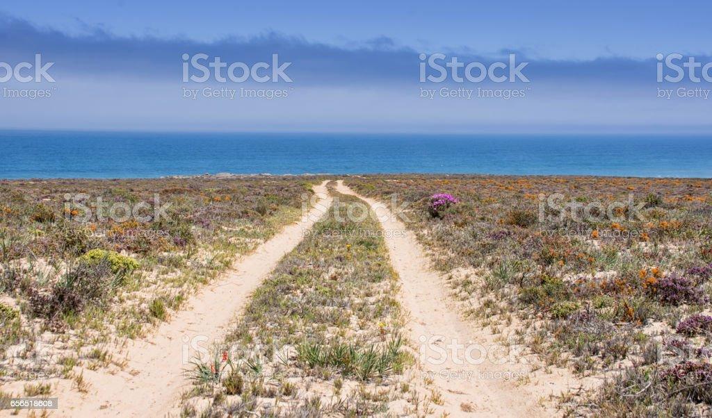 Namaqualand Coastline stock photo