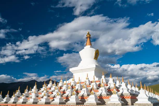 namgyal tallinn, daocheng çiçek ile geleneksel tibet budist tarzı beyaz pagoda, ganzi, sichuan, çin - ganzi tibet özerk bölgesi stok fotoğraflar ve resimler