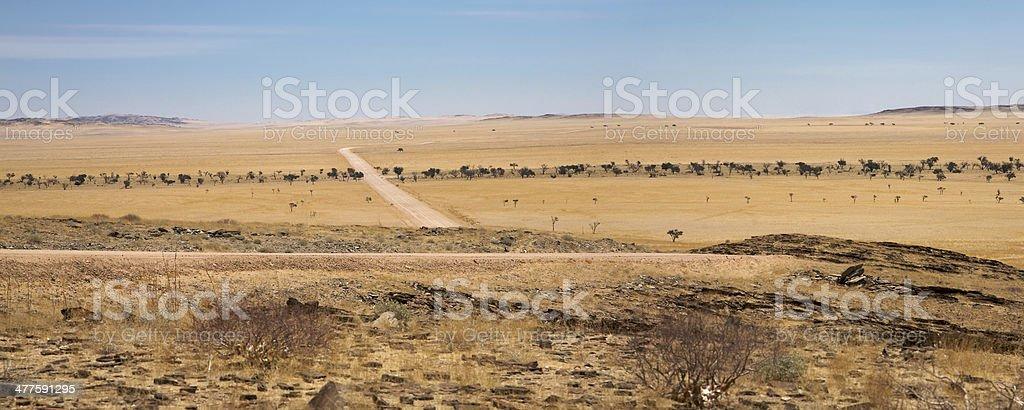 Namib and road going toward the desert royalty-free stock photo