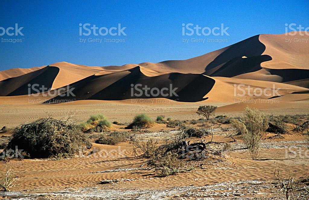 나미브 사막 언덕 royalty-free 스톡 사진