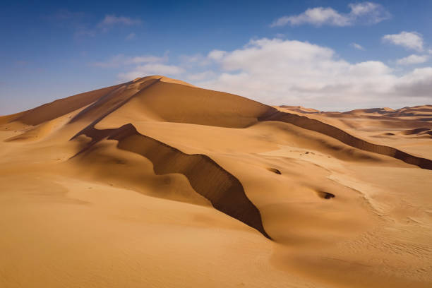 Namib Desert Sand Dune Walvis Bay Dunes of Namib Namibia Beautiful giant Namib Desert Sand Dunes under blue summer sky. Aerial Drone point of view to Namib Desert Dunes between Swakopmund and Walvis Bay, Erongo Region, Namibia, Africa. namib desert stock pictures, royalty-free photos & images