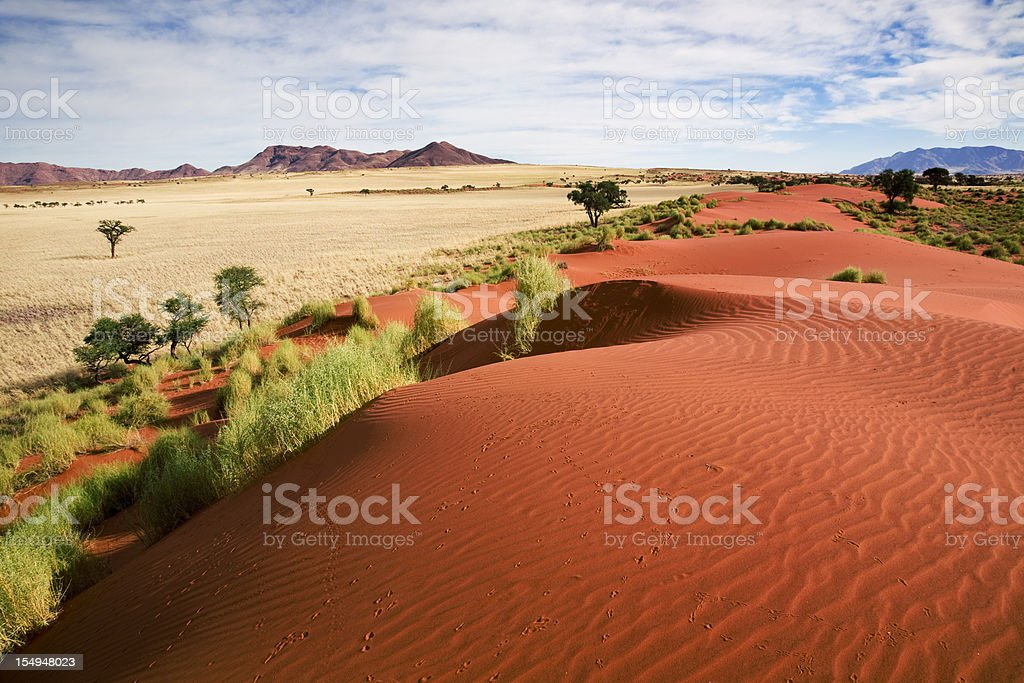 Namibia prairie landscape stock photo