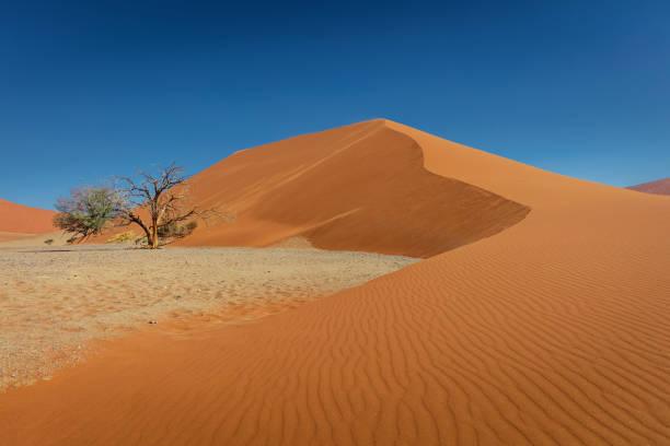 namibia sand dune 45 desert panorama sesriem - namib wüste stock-fotos und bilder