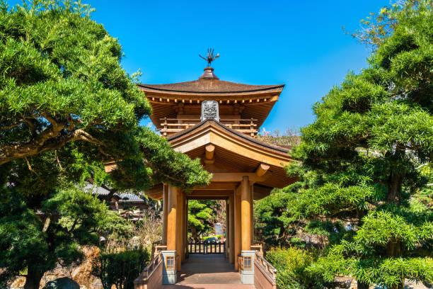 nan lian garden, a chinese classical garden in hong kong - lian empty imagens e fotografias de stock