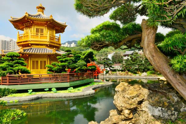 nan lian garden, chi lin nunnery, hong kong - lian empty imagens e fotografias de stock