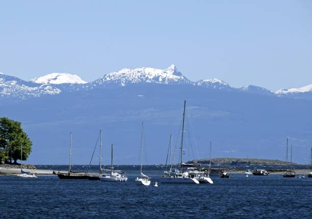 Nanaimo marina – Foto