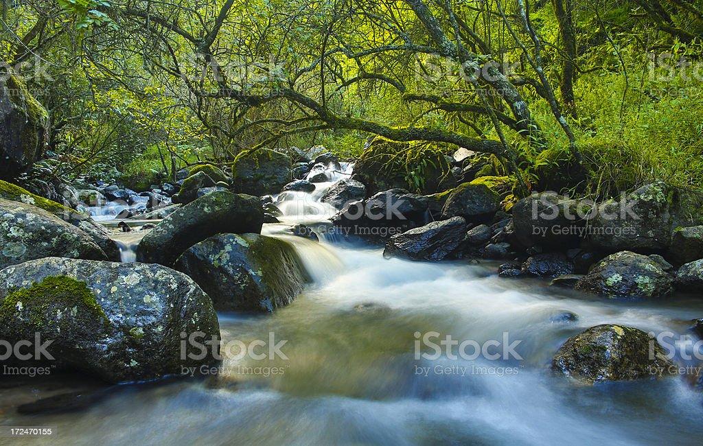 Nandi Falls Drakensberg mountains royalty-free stock photo
