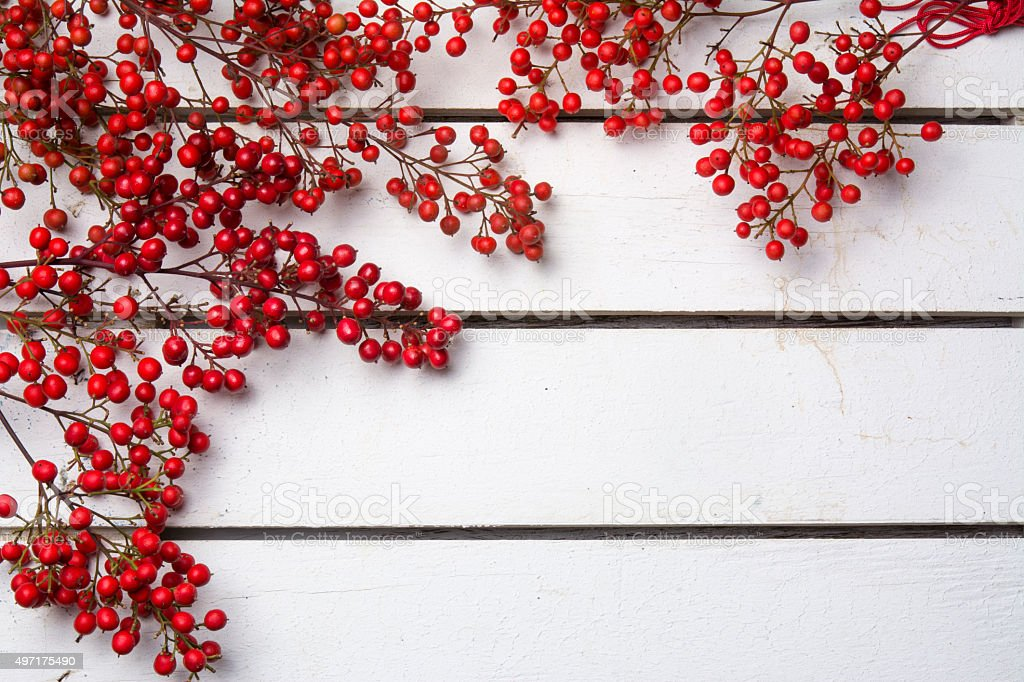 nandian christmas, branck with red berries, white wood background stock photo