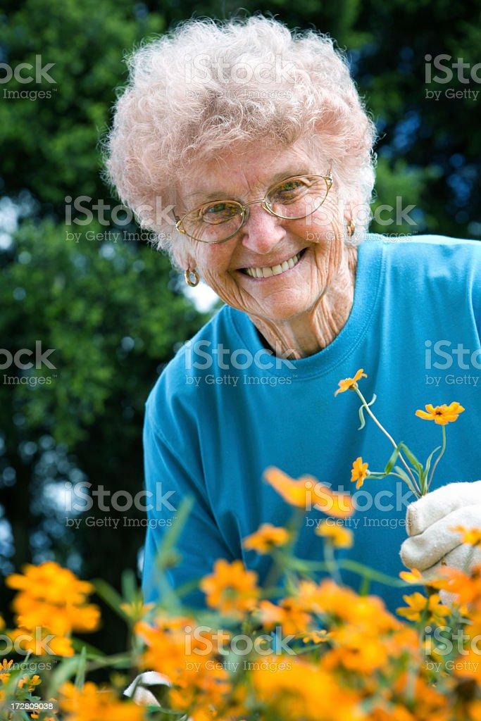 Nanna Gardening royalty-free stock photo