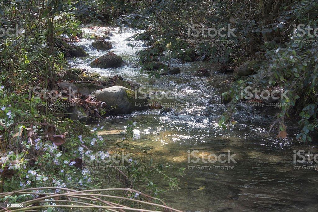 Nantahala NC Creek stock photo