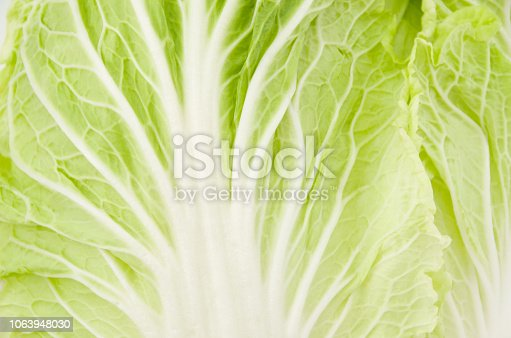 Napa cabbage or Chinese cabbage closeup