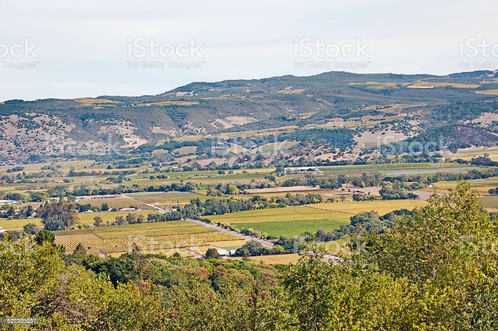 Napa Valley from Hillside of Oakvale California stock photo