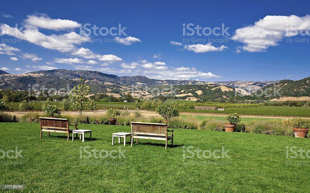 napa valley royalty-free stock photo