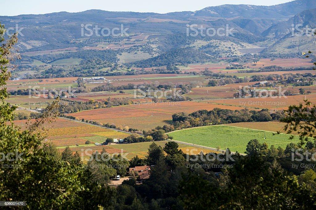 Foto De Napa Valley E Mais Fotos De Stock De Agricultura Istock