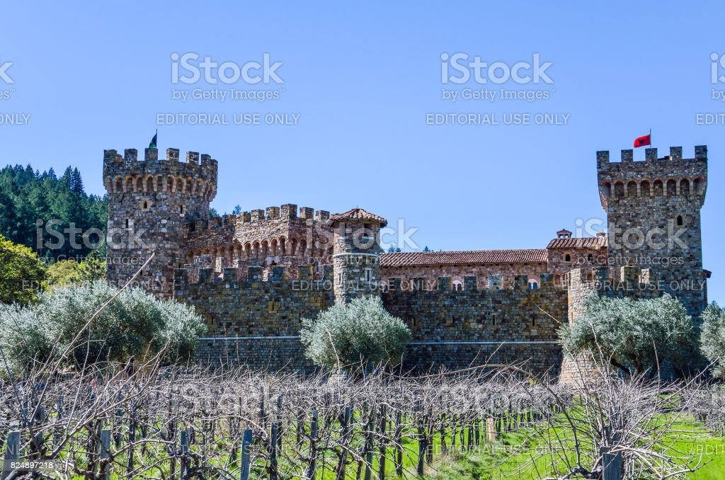 Napa Valley vineyard castle called Castello Di Amorosa in California with grapevine rows stock photo
