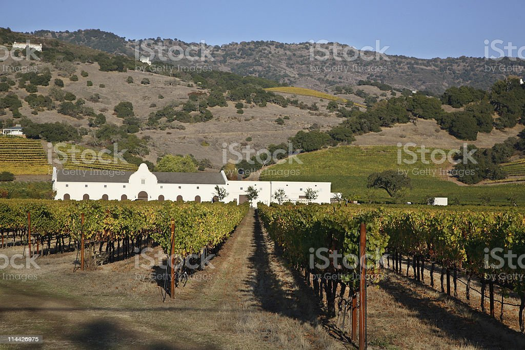 Napa Valley winery and vineyards royalty-free stock photo