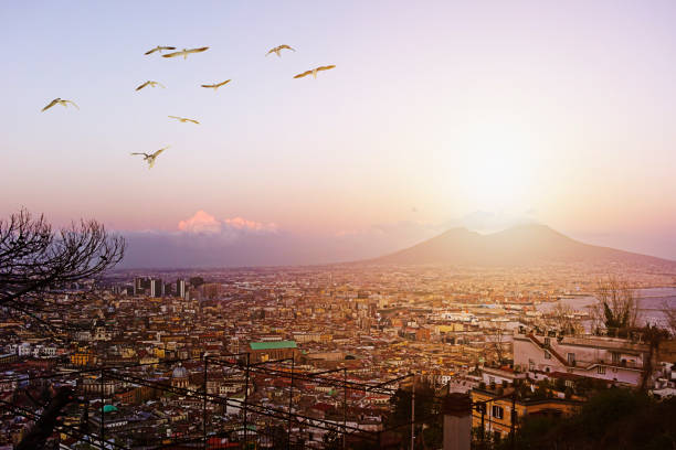 Naples and the Vesuvius panorama - foto stock