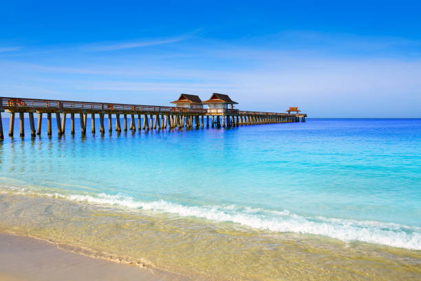 Naples Pier and beach in florida USA Naples Pier and beach in florida USA sunny day naples florida stock pictures, royalty-free photos & images
