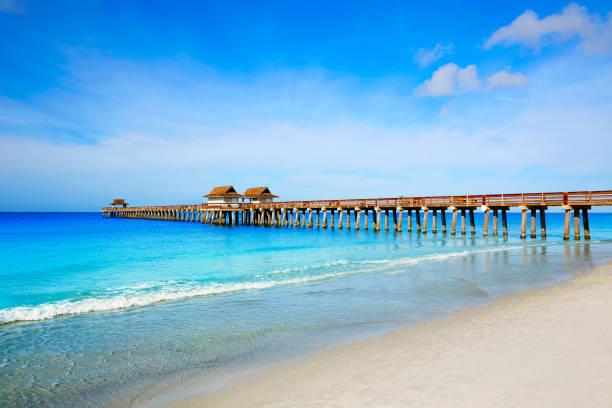 naples pier und strand in florida usa - golfküstenstaaten stock-fotos und bilder