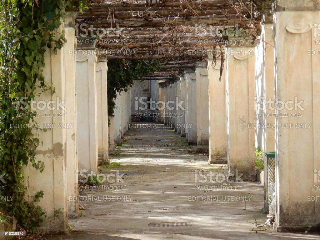 Napoli - Pergolato dei Giardini di San Martino stock photo