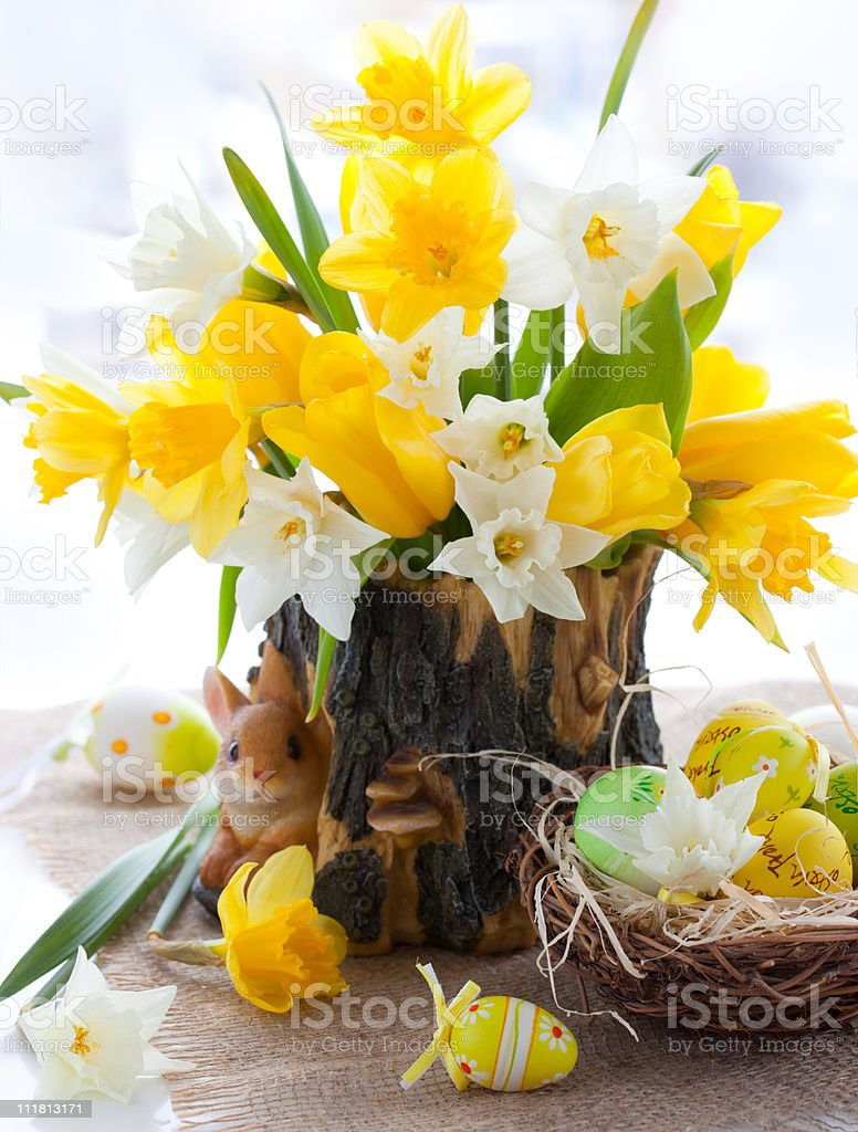 Narcissus and tulips for Easter royalty-free stock photo