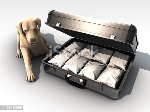 Heroin packages in the suitcase on white background. Narcotic dog found the drugs in airport. Black money laundering..