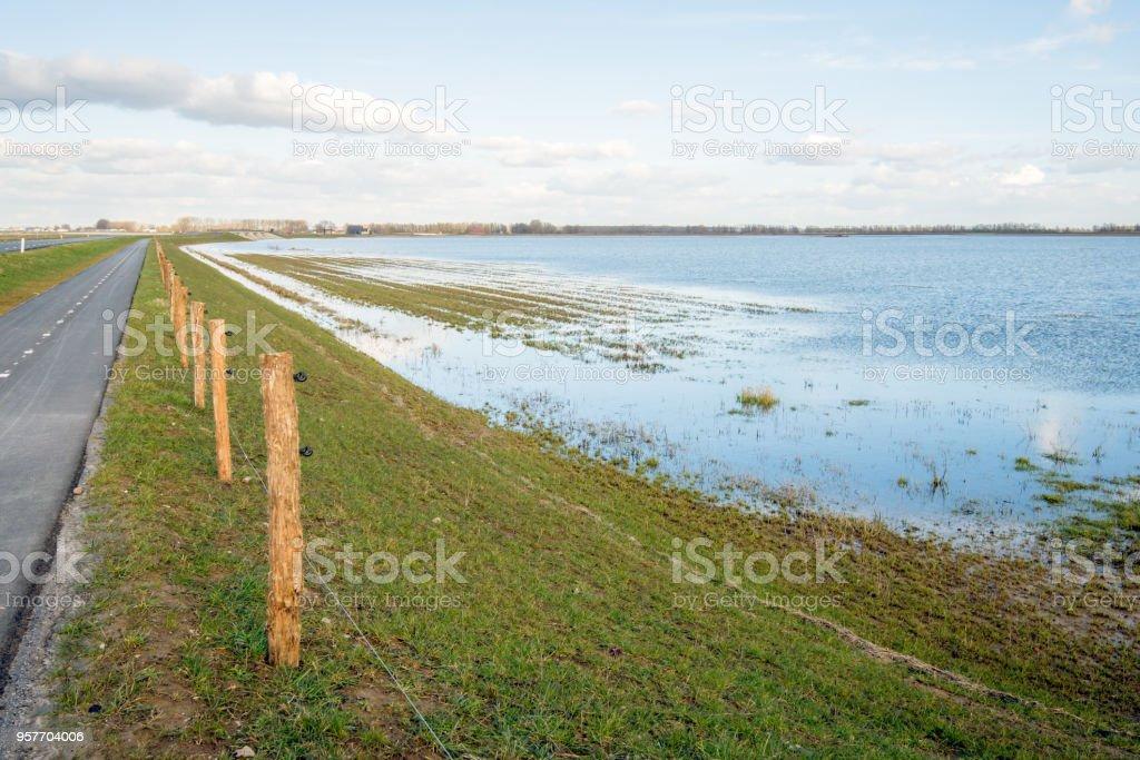 Narrow asphalt road along a flooded polder stock photo