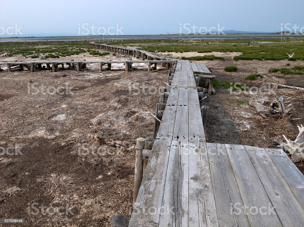Narrow boardwalk stock photo