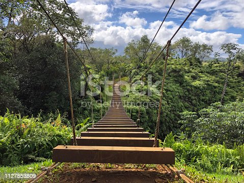 About to cross a narrow wooden bridge over a deep canyon in Hawaii