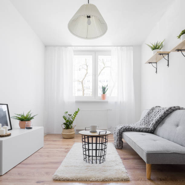 Narrow living room Narrow and stylish living room with furniture and decoration in scandinavian style narrow stock pictures, royalty-free photos & images