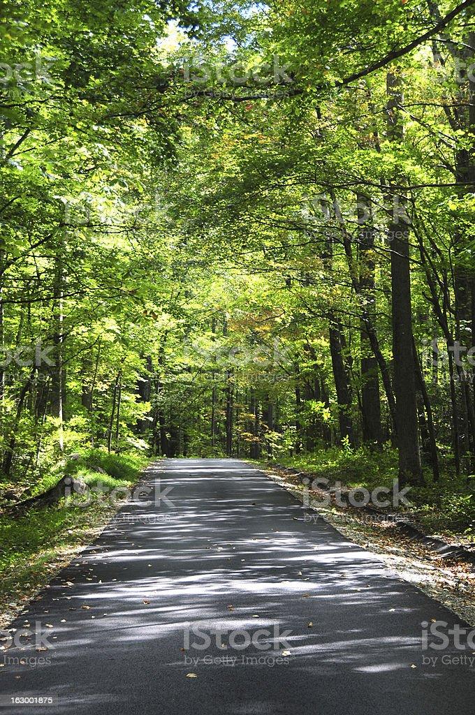 Narrow road in Smoky Mountain National Park stock photo