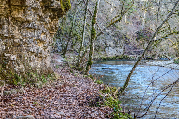 A narrow, slippery hiking trail through the Wutach Gorge. stock photo