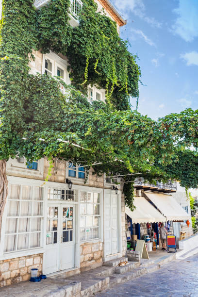 Narrow traditional house with plants ivy in the town of Hydra, Hydra island, Greece stock photo