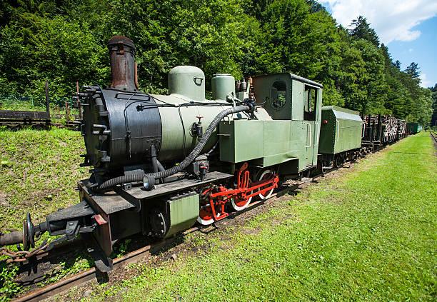 Narrow gauge railway, Dampflok in Cisna, Polen – Foto