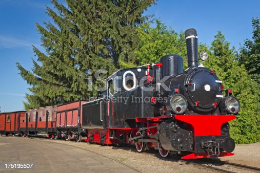 istock Narrow-gauge railway train 175195507