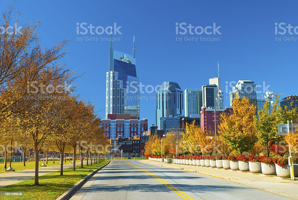 Nashville skyline and Fall Plants Nashville skyline with fall trees and other plants in the foreground. Architecture Stock Photo
