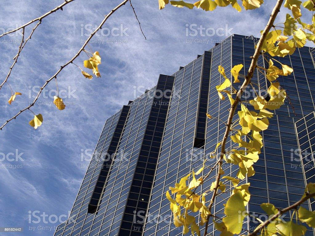 Nashville Skyscraper royalty-free stock photo