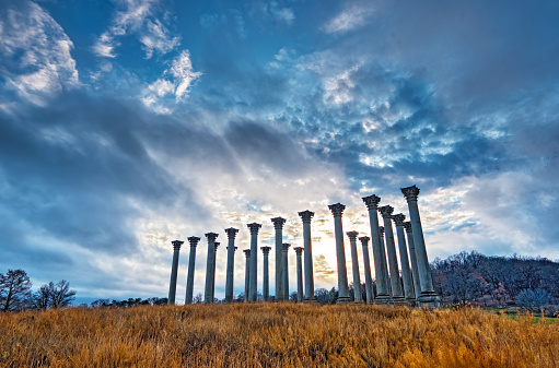 The columns at the National Arboretum in Washington, DC