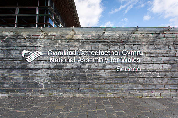National Assembly for Wales Cardiff, UK: March 10, 2016: The National Assembly for Wales is a devolved assembly with power to make legislation in Wales. It is a popular tourist attraction in the Cardiff Bay area.  welsh culture stock pictures, royalty-free photos & images