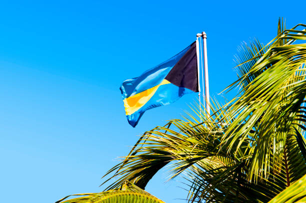 national bahama flag and palm tree, clear blue sky - bahamas foto e immagini stock