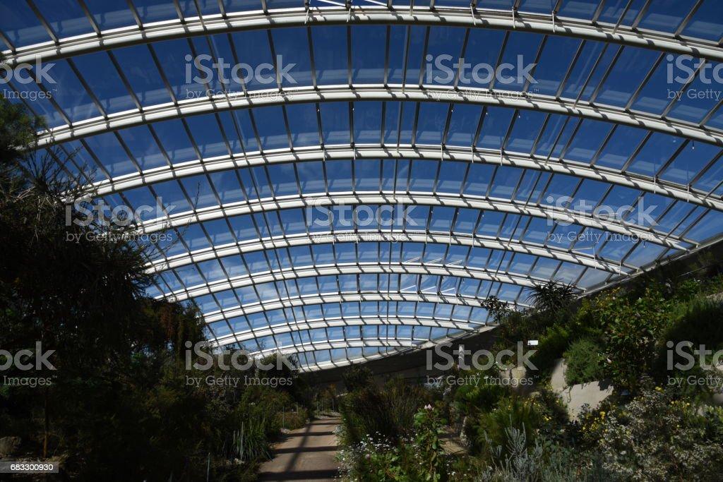 National Botanic Garden of Wales, Carmarthenshire, Wales, UK royaltyfri bildbanksbilder