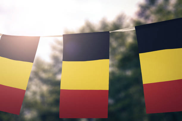 Drapeau national du fanion de Belgique - Photo